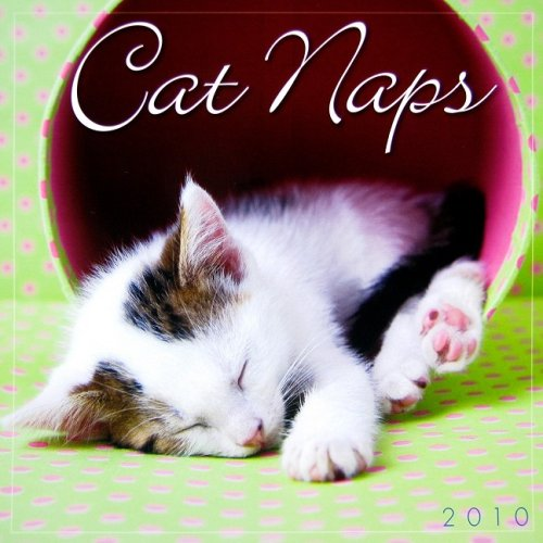 - Cat Naps 2010 Mini Wall Calendar (Calendar)