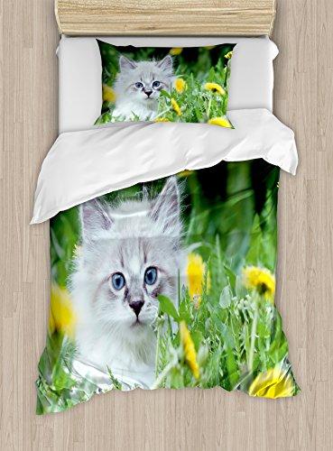 Lunarable Cute Duvet Cover Set Twin Size, Small Kitten Kitty