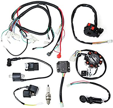 Amazon.com: WonVon Complete Electric Stator Engine Wiring Harness Loom with  Full Copper Wire For Chinese Dirt Bike ATV QUAD 150-250 300CC: AutomotiveAmazon.com