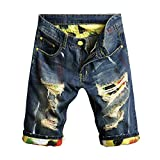 Chen Men's Denim Shorts Ripped Mid Waist Hip hop Jeans Shorts (40, Style6)