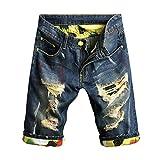 Chen Men's Denim Shorts Ripped Mid Waist Hip hop Jeans Shorts (34, Style6)