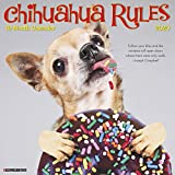 Chihuahua Rules 2020 Wall Calendar (Dog Breed Calendar)