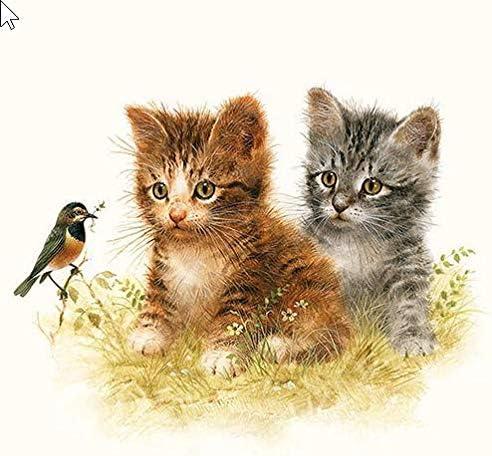 20 servilletas de Gatos accesibles como decoración de Mesa para los Amantes de los Animales 33 x 33 cm: Amazon.es: Juguetes y juegos
