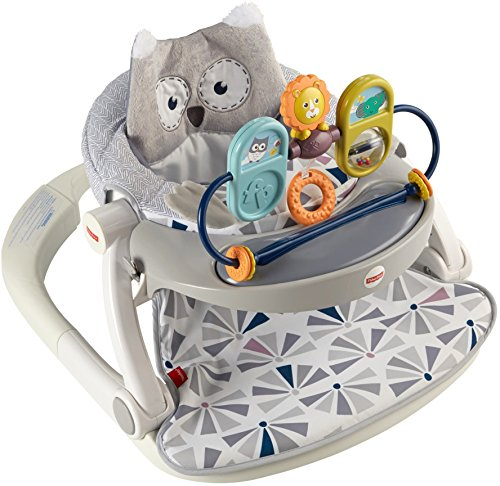 Fisher-Price Premium Sit-Me-Up Floor Seat with Tray, Owl