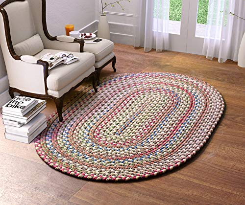 Super Area Rugs Roxbury Indoor Outdoor Braided Rug Dk. Taupe/Natural Multi Colored RB39, 2' X 3' Oval
