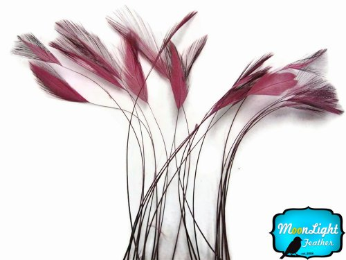 (Moonlight Feather | 1 Dozen - Dusty Rose Stripped Rooster Hackle Feather Millinery, Hand Stripped Craft Feathers)
