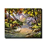 Shukqueen Diy Oil Painting, Adult's Paint by Number Kits, Acrylic Painting Wild Deer 16X20 Inch (Frameless)