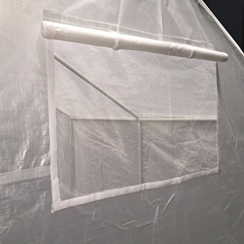 513EZ8ZD ZL - King Canopy GH1010 10-Feet by 10-Feet Fully Enclosed Greenhouse, Clear
