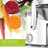Juiceman JM400 Classic 2 Speed Juicer, with 48oz