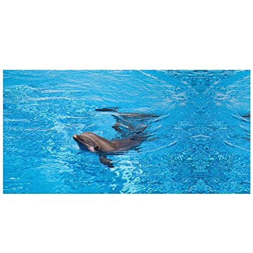 Cheap  BJHAP Ocean Dolphin Floor Stickers Non-Slip Removable Wall Decals Murals Bathroom Kitchen..