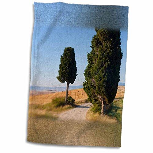 3drose-danita-delimont-italy-winding-road-val-d-orica-tuscany-italy-12x18-towel-twl-227671-1