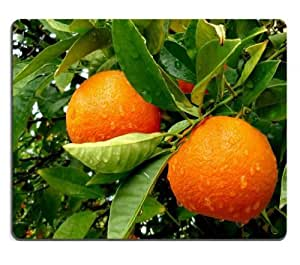 Orange Tree Fruits Drops Green Leaf Mouse Pads Customized Made to Order Support Ready 9 7/8 Inch (250mm) X 7 7/8 Inch (200mm) X 1/16 Inch (2mm) High Quality Eco Friendly Cloth with Neoprene Rubber MSD Mouse Pad Desktop Mousepad Laptop Mousepads Comfortable Computer Mouse Mat Cute Gaming Mouse pad
