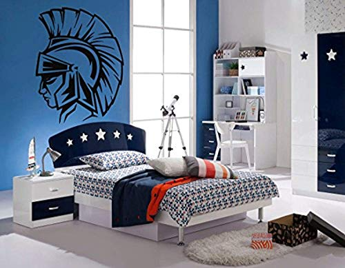 - Decal Sticker Spartan Warrior Head Helmet Fight Boys Teenager roomWall Vinyl SK1947
