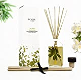 LOVSPA Lush Palm & Jasmine Reed Sticks Oil Diffuser | Tranquil Scent Made with Premium Essential Oils | Green Palm, Jasmine, Lily of the Valley & Earthy notes