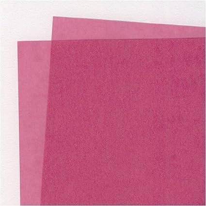 amazon com translucent colored vellum blush 19x25 inch sheet