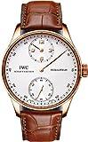 IWC Portuguese Regulateur Mens Watch IW544402