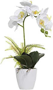 OMYGARDEN Artificial Orchid Flowers with White Pot, Phalaenopsis, Fake Plastic Orchid Flowers, Decoration for Home Office, Wedding Bouquets(White 1 Bouquet)