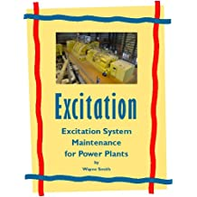 Excitation System Maintenance for Power Plants (Electrical Power Plant Maintenance Book 1)