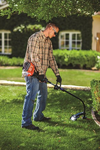 Remington RM2510 Rustler 25cc 2-Cycle 16-Inch Curved Shaft Gas Trimmer