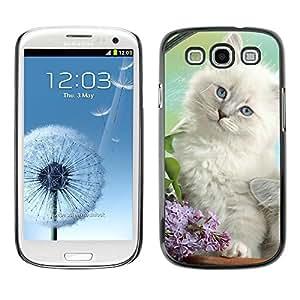 TopCaseStore / la caja del caucho duro de la cubierta de protección de la piel - White Spring Kitten Angora Siberian Cat - Samsung Galaxy S3 I9300