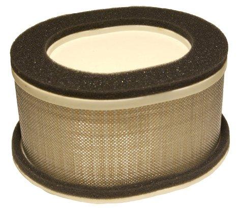 Emgo 12-95844 Air Filter