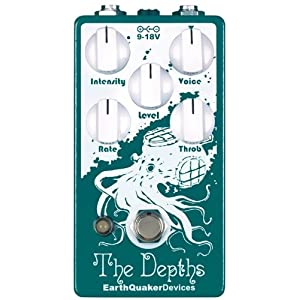 EarthQuaker Devices The Depth