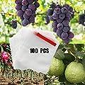 Alltripal Reusable Fabric Fruit Protection Bags Reusable Nylon Mesh Netting Barrier Bags for Apple Grape Mango Pear Fruit and Vegetable Against from Birds