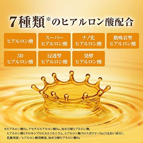 Hada Labo Gokujun Premium Hyaluronic Emulsion Cream Fall 2020 Renewal 140mL