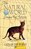 Cats of the World Card Game (Natural World Playing Card Collection)