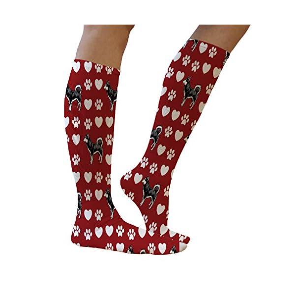 Funny Knee High Socks Alaskan Klee Kai Dog Red Polyester Tube Women & Men 1 Size 5