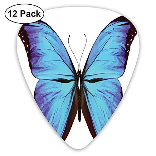 Guitar Picks - Abstract Art Colorful Designs,Flying Butterfly Vibrant Wings Natural Art Jungle Wildlife,Unique Guitar Gift,For Bass Electric & Acoustic Guitars-12 Pack