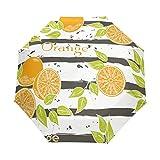 DOENR Compact Travel Umbrella Orange Sun and Rain Auto Open Close Lightweight Portable Folding Umbrella