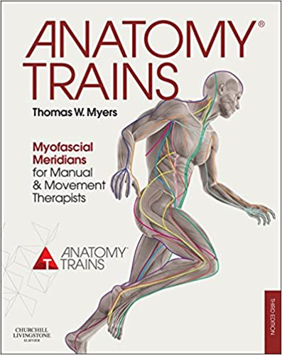 Anatomy trains e book myofascial meridians for manual and anatomy trains e book myofascial meridians for manual and movement therapists 3rd edition kindle edition fandeluxe Gallery