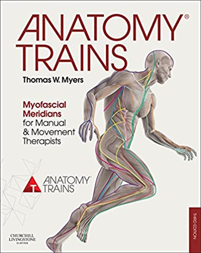 Manual transmision fuller ebook array anatomy trains e book myofascial meridians for manual and movement rh amazon com fandeluxe Gallery