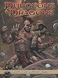 Dungeons and Dragons: Dark Sun - Ianto's Tomb, Alexander Irvine, 1600109969