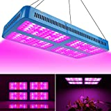 Derlights 2000W Double Chips LED Grow Light Full Specturm Grow Lamp for Greenhouse Hydroponic Indoor Plants Veg and Flower (2000w)