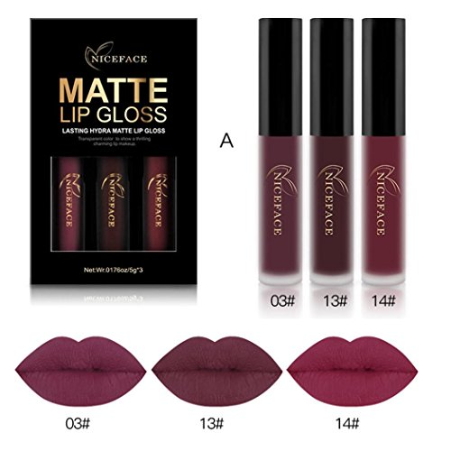 3PCS/Set New Fashion Waterproof Matte Liquid Lipstick Cosmetic Sexy Lip Gloss Kit WensLTD (A)