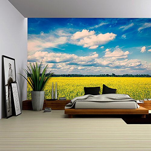 Spring Summer Background Vintage Retro Effect Filtered Hipster Style Image of Yellow Canola Field with Blue Sky