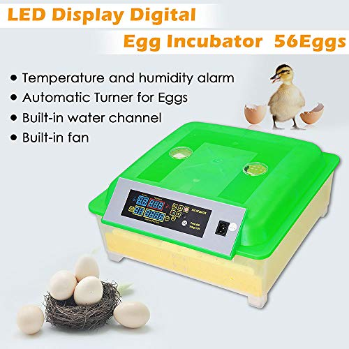 Yescom 80W Digital 56 Egg Incubator Clear Hatcher w/Automatic Turner for Chicken Poultry Duck Bird Egg