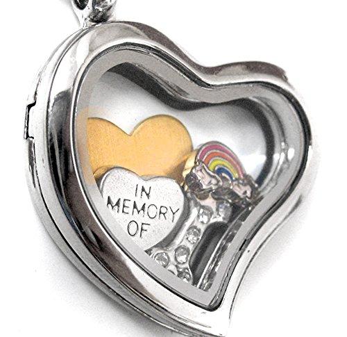 Pet Memorial Jewelry - Stainless Steel Floating Locket