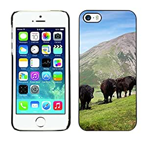 Etui Housse Coque de Protection Cover Rigide pour // M00111027 Bovinos Animales Vacas Ganado Vaca // Apple iPhone 5 5S 5G