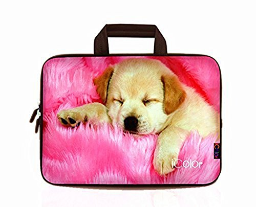 iColor Fashion Dog 11.6