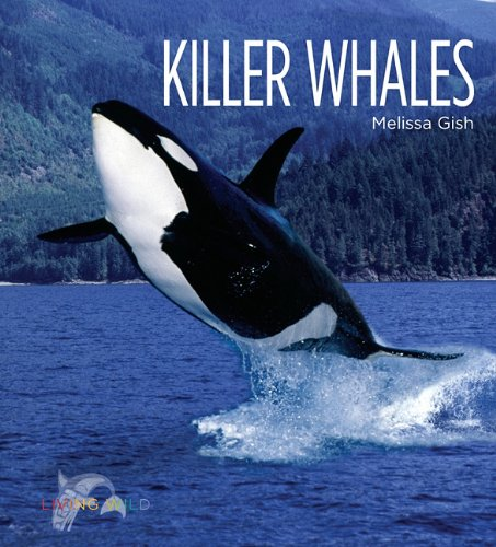 Download Killer Whales (Living Wild) pdf epub