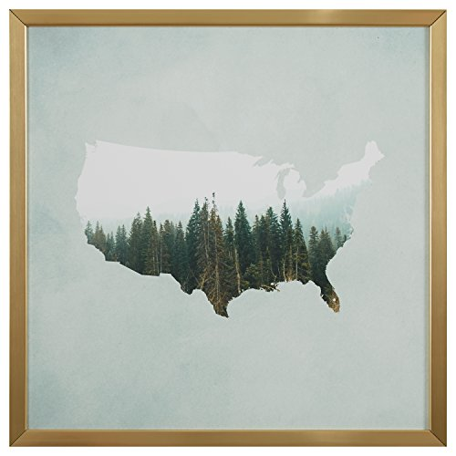 American Forest Map Print in Gold Wood Frame, 30\