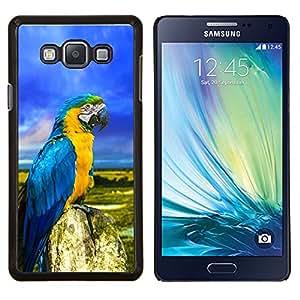 YiPhone /// Prima de resorte delgada de la cubierta del caso de Shell Armor - Loro coloridas plumas azules de verano - Samsung Galaxy A7 A7000