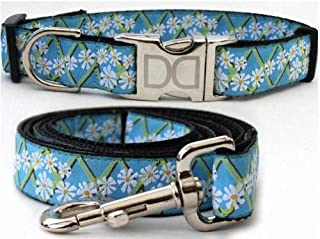 "product image for Diva-Dog 'Daisy' Custom 1"" Wide Dog Collar with Plain or Engraved Buckle, Matching Leash Available - M/L, XL"