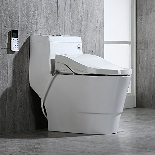 Amazing Best Rated Bidet Toilet Seat Inzonedesignstudio Interior Chair Design Inzonedesignstudiocom
