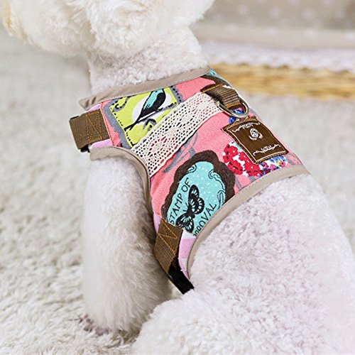 Walking Rabbit Jacket (Smart Cat Harness Leash Set Escape Proof Walking,Fully Adjustable Padded Jacket Cats Harnesses, Best Pet/Kitten/Cat Harness Lead)
