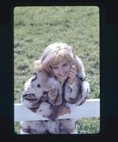 SUE LYON RARE VINTAGE PHOTO SHOOT FUR COAT ORIGINAL 35MM SLIDE (Vintage 35mm Slide)