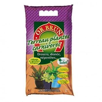plante carnivore substrat